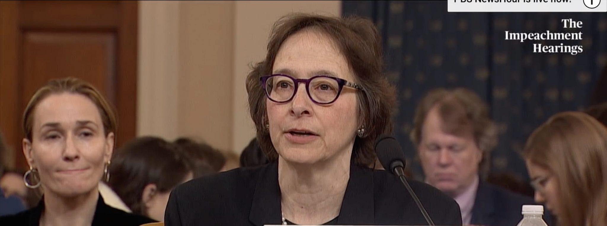 Pamela Karlan testifying on Wednesday