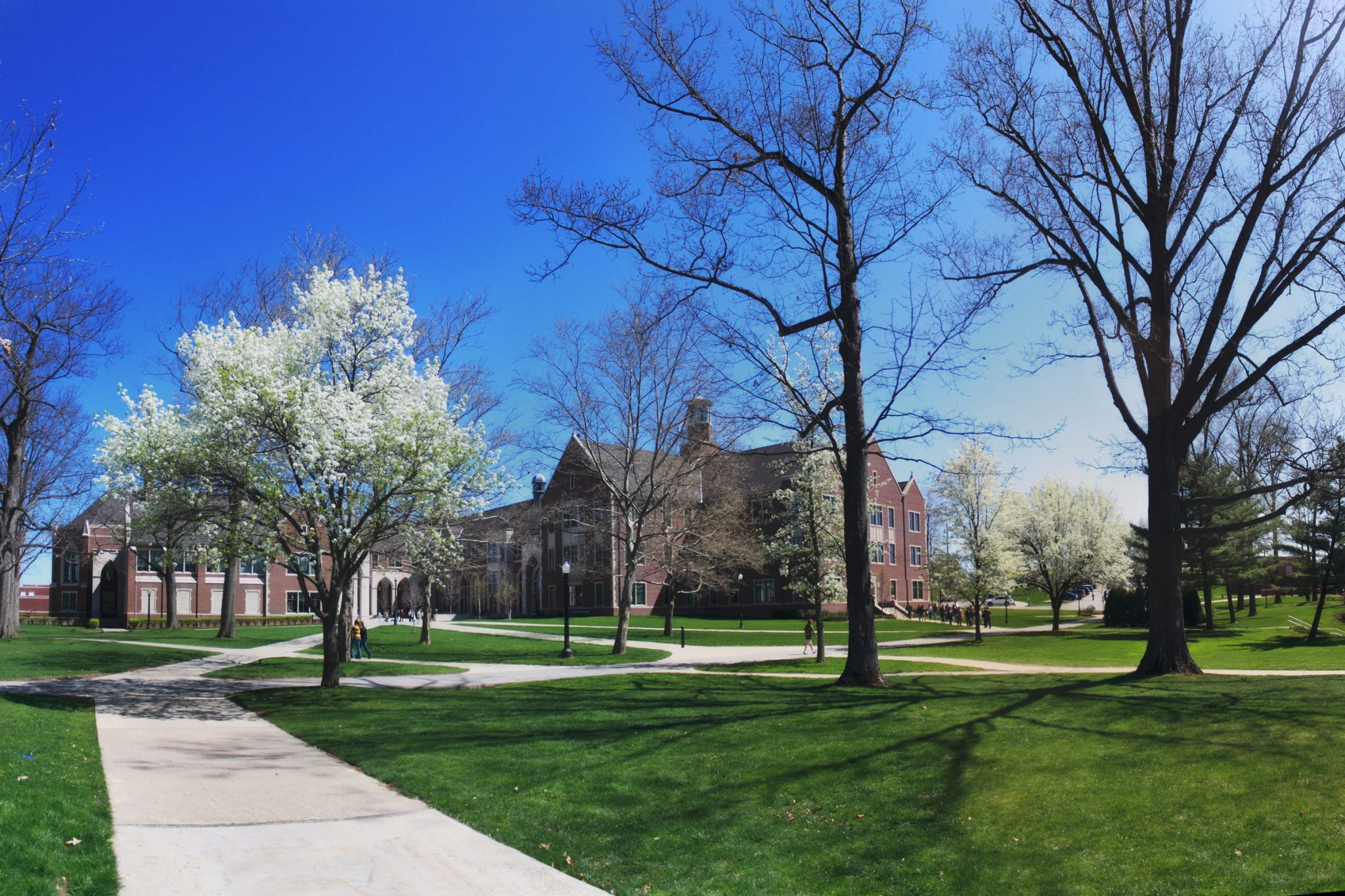 Colleges and COVID-19   The American Spectator   USA News and PoliticsThe American Spectator   USA News and Politics