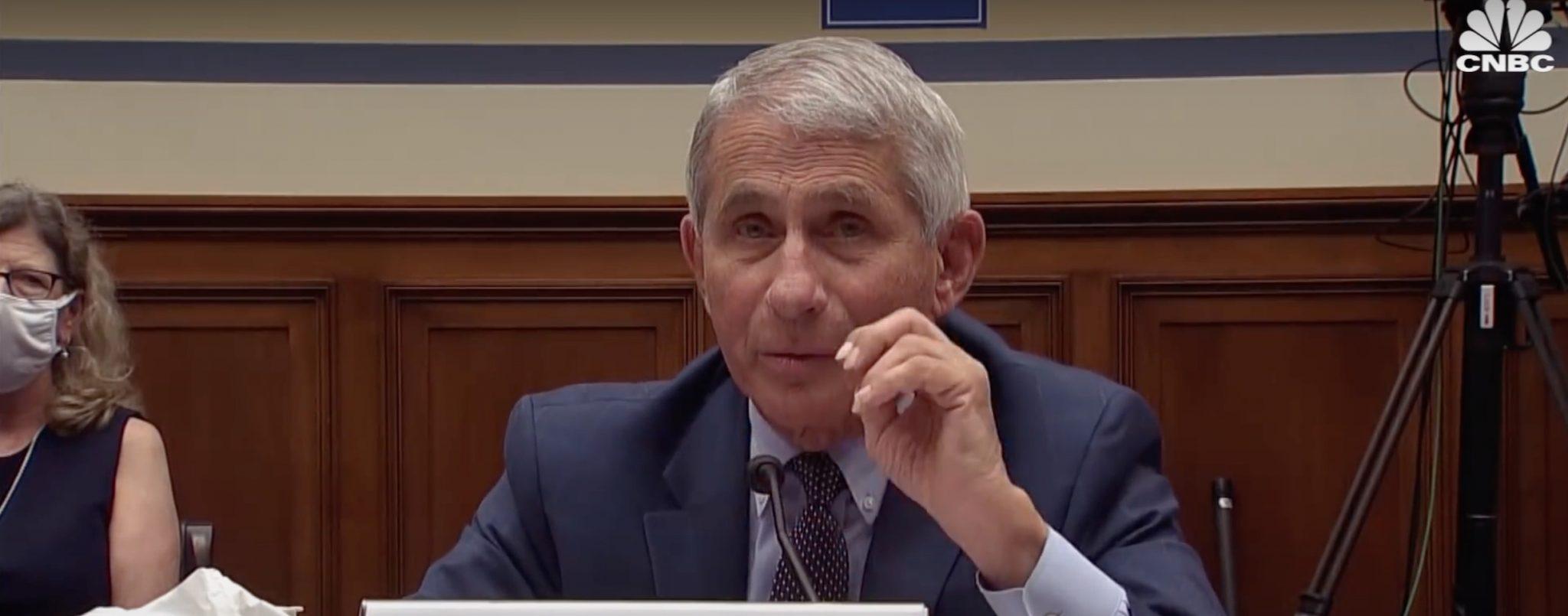Dr. Anthony Fauci (YouTube screenshot) spectator.org