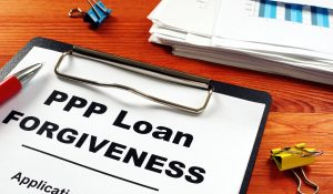 PPP loan clipboard, welfare fraud (Vitalii Vodolazskyi/Shutterstuck.com) spectator.org