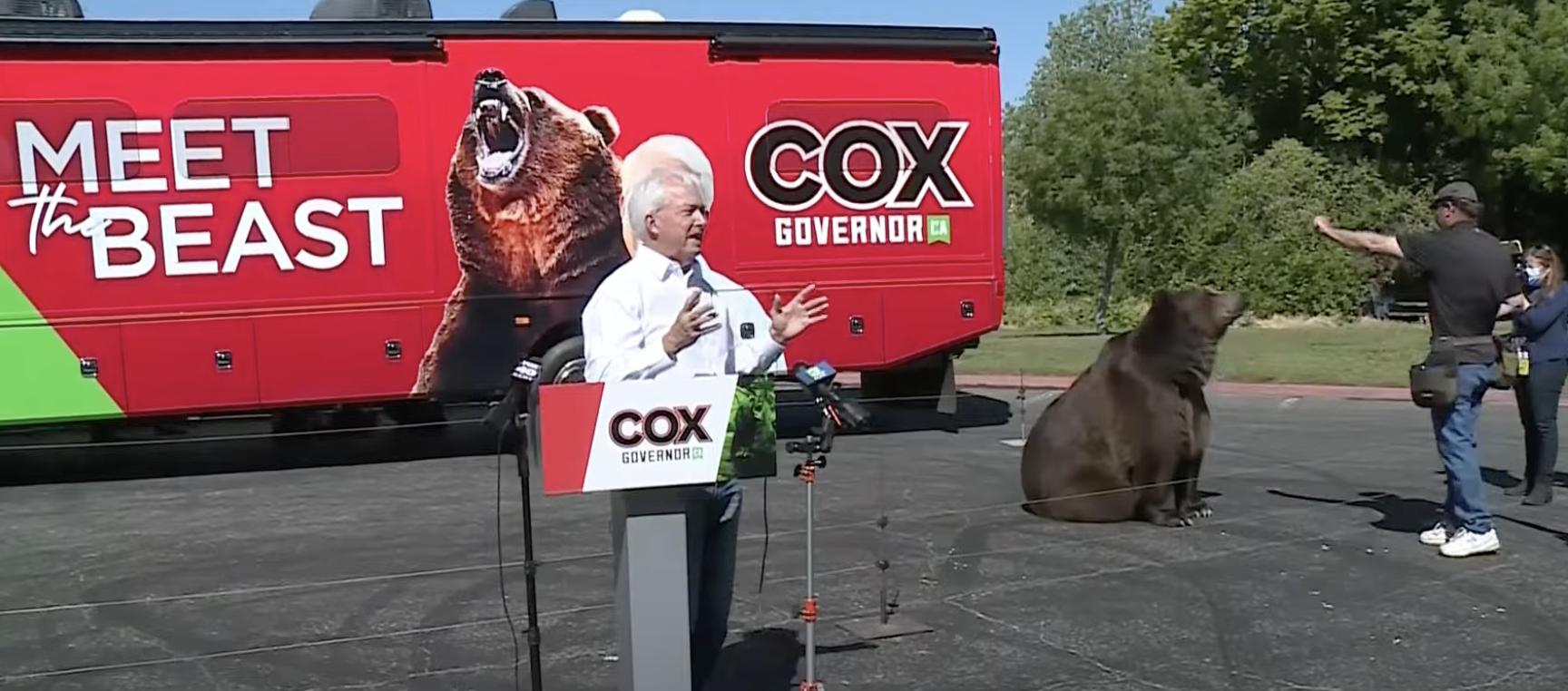 California Governor Recall Devolves Into a Circus | The American Spectator | USA News and PoliticsThe American Spectator | USA News and Politics