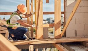 Construction worker. Svitlana Hulko/Shutterstock
